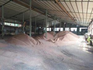 зерно в порту
