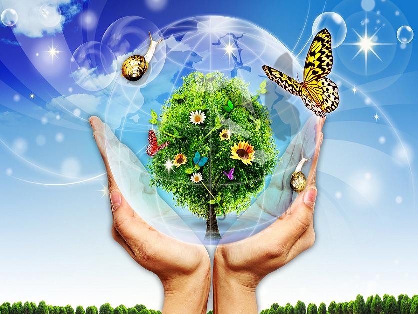 Молодых, картинки охрана природы и окружающей среды для дошкольников